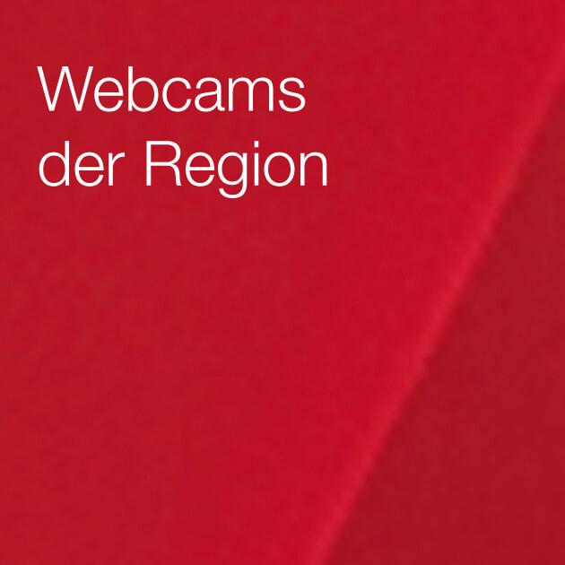 Werfen Sie einen Blick auf die Lausitz mit unseren Webcams
