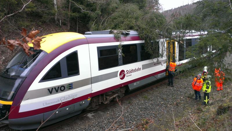 Baumumstürze: Privatbahnen funken SOS