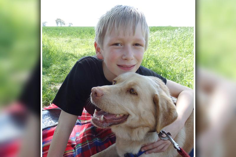 Soziales Tierheim: Gassi gehen  wirkt wie eine Therapie