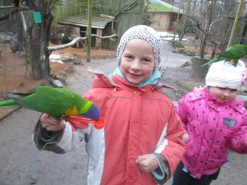 Tierische Freuden für die Kinder
