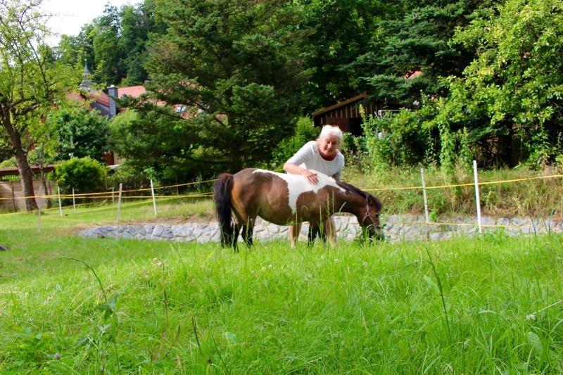 Pony Flicka genießt Wellness-Urlaub