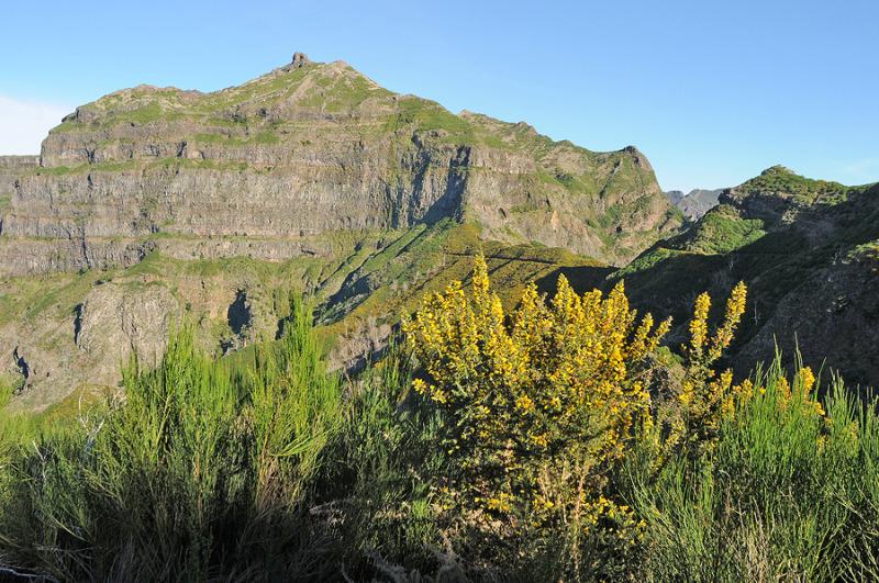 Reisereportage über Madeira