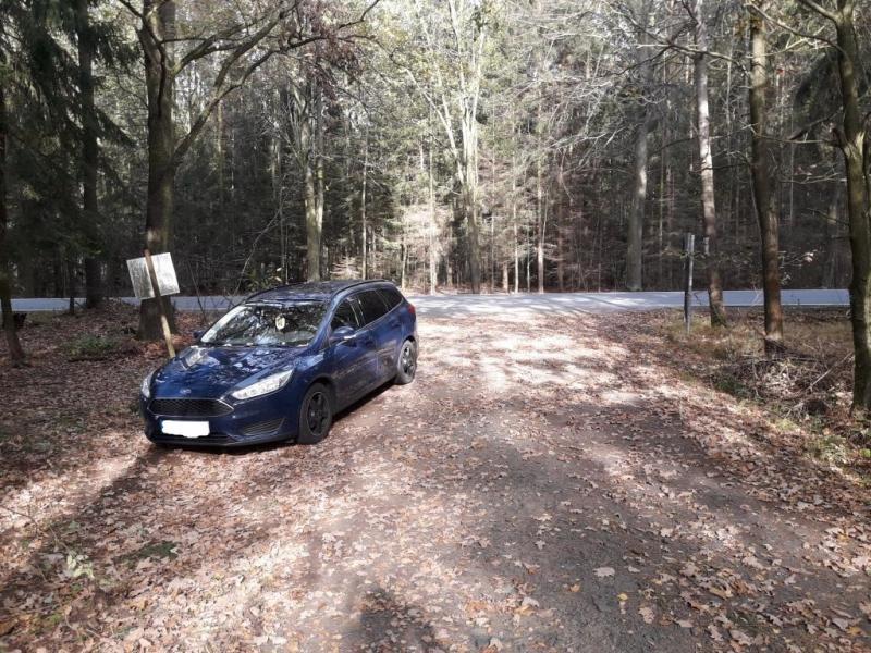 Wenn der Wald zum Parkplatz wird