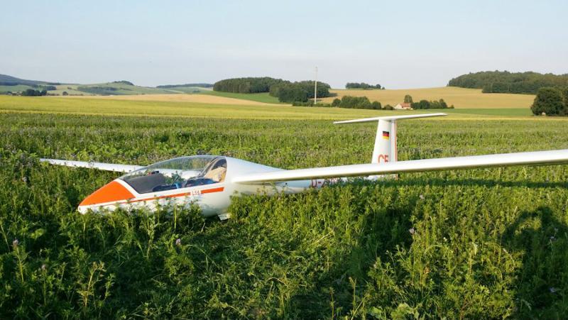 Segelflugzeug landet auf Feld