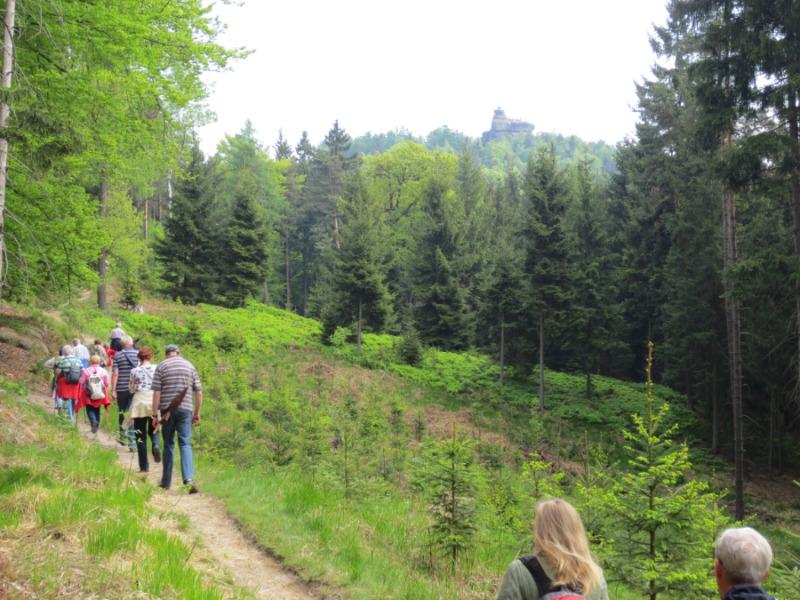 SPD sagt Wanderung zum Pfaffenstein ab