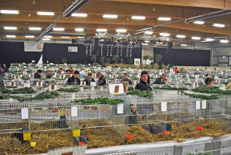 Landwirtschaftsausstellung in Löbau abgesagt