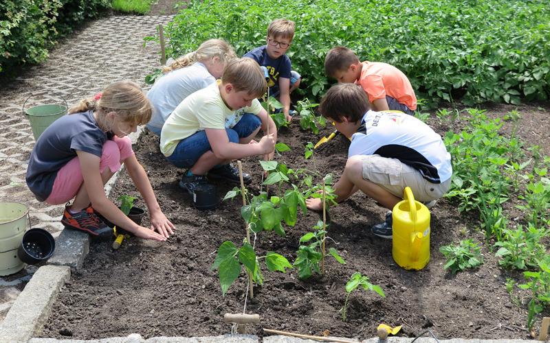 Erster Preis für Schulgarten im Haselbachtal