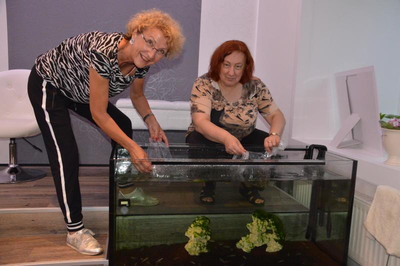 Leckere Knabbereien für Görlitzer Fische
