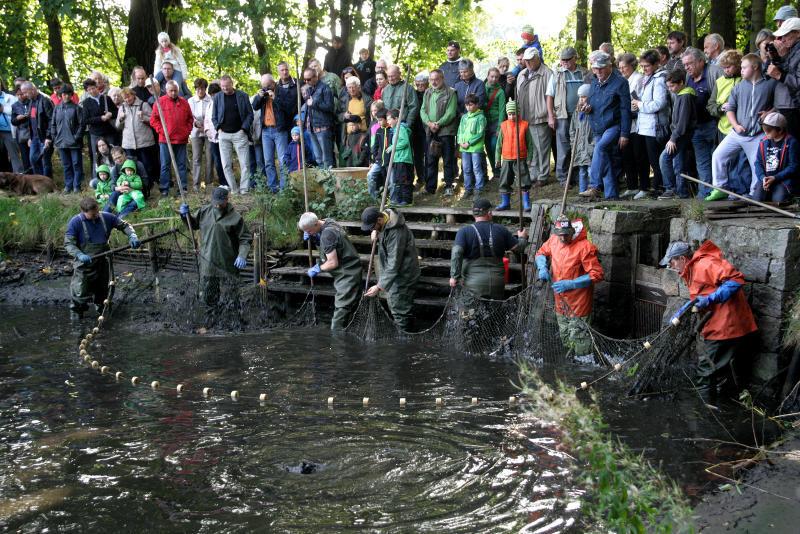 Ein großes Fest zum Abfischen