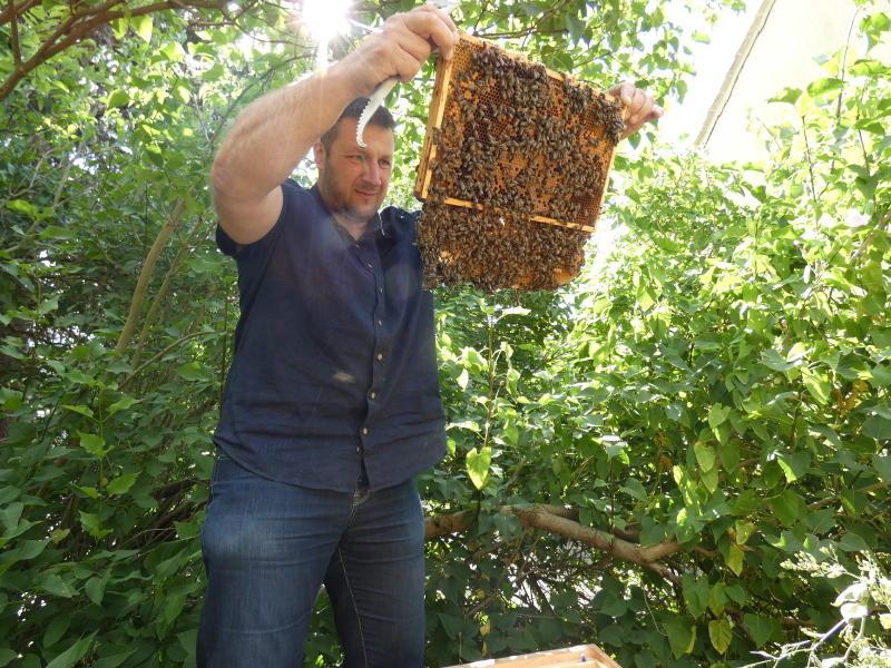 Schwester Agnes kommt zu den Bienen