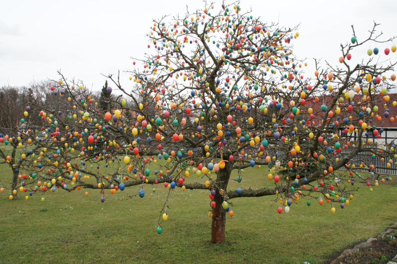 Apfelbaum als Eierbaum