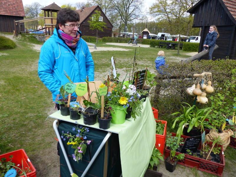 Gartenmarkt im Erlichthof