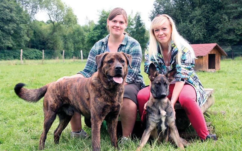Tierheim: Ausbildungspaten für ersten Lehrling gefunden