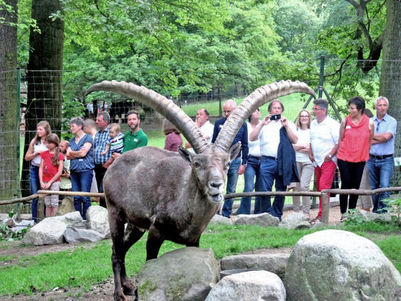 Zoos benötigen 100 Millionen Euro Soforthilfe