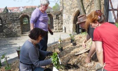 Ein Kiezgarten für die Kamenzer Innenstadt