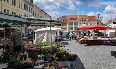 Löbauer Wochenmarkt öffnet wieder