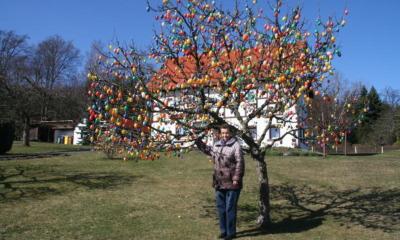 Circa 1.750 bunte Ostereier schmücken farbenfrohen Apfelbaum