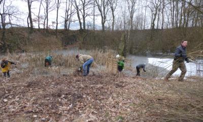 Biotoppflege im Steinbruch