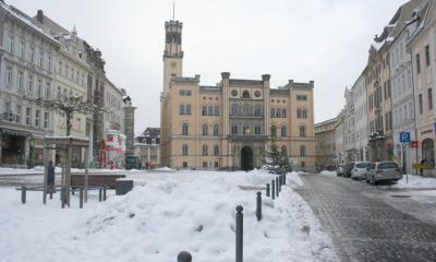 Schneemänner erobern Zittauer Marktplatz