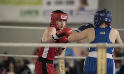 Der Boxclub Dreiländereck startet neu durch