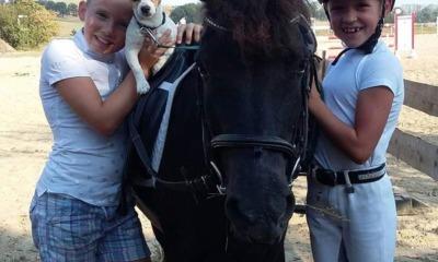 Junge Reiter messen sich in Kodersdorf
