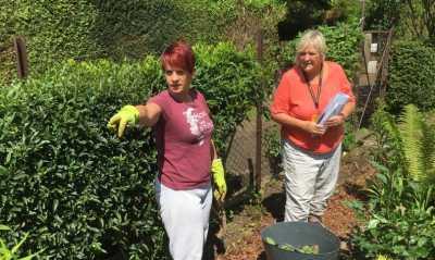 Kleingärten haben endlich wieder Zulauf