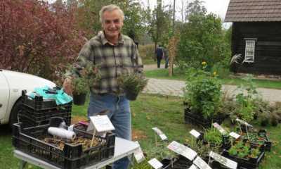 Herbstgartenmarkt und Ferienangebote locken