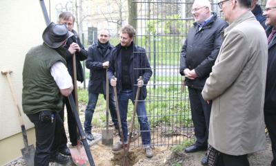 """Mauerfonds hilft beim """"Mauerbau zu Görlitz"""""""
