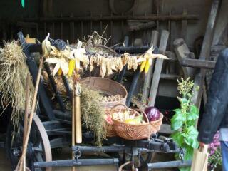 Erntedank im Dorfmuseum Markersdorf voller Traditionen