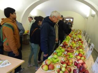 Obst- und Winzerfest im Kloster St. Marienthal